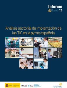informe-epyme-2012-ontsi-1